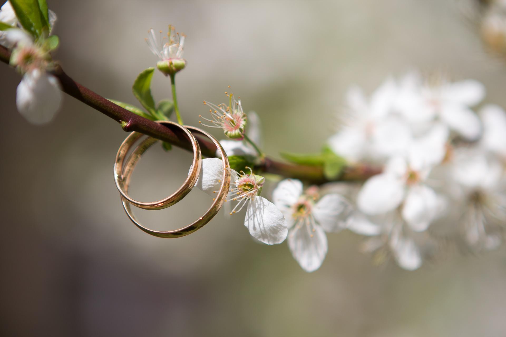 anillos-especiales